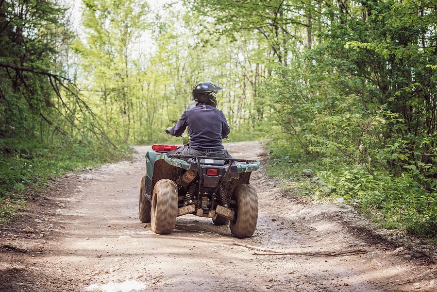 ATV-kørsel i skov
