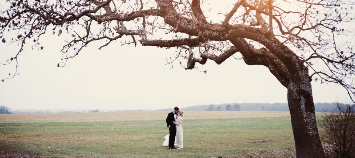 Norsk bryllup i danmark, med par, der står og kysser under et gammelt egetræ