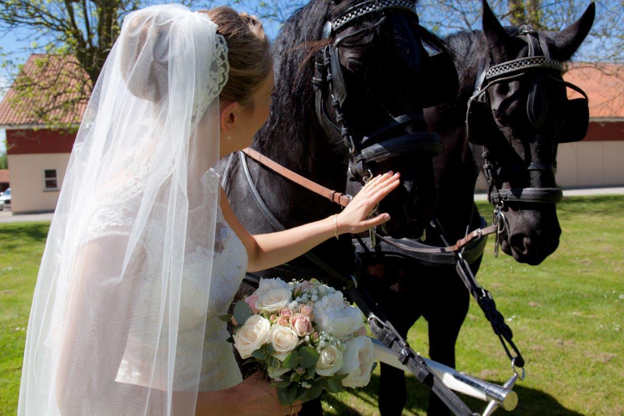 Hestevogn bryllup