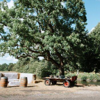 Halmballesofa under stort træ ved Sonnerupgaard Gods