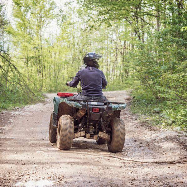 En mand kører på ATV i skoven