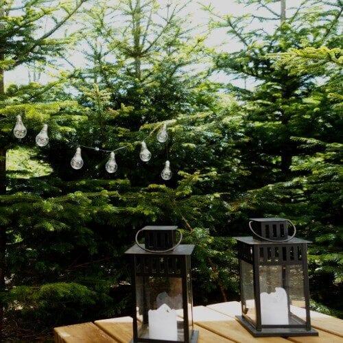 To lanterner og lyskæde blandt grantræer