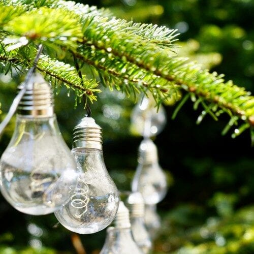 Pærer i lyskæde i grantræ