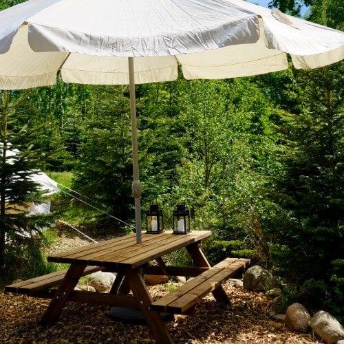 Bord og bænkesæt med parasol blandt grantræer